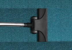 Hire a Professional Carpet Cleaner